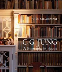 CG Jung A Biography in Books